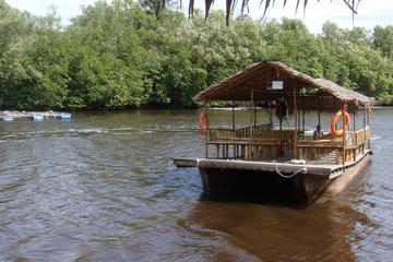 Mangrove Cruise & Crab Catching Tour From Kota Kinabalu