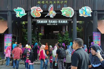 Melaka Crocodile Farm & Butterfly Park Tour With Lunch