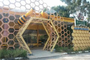 Melaka Full Day Garden Museum & Park Tour with Lunch