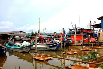 Paddy Field & Fishing Village Experience at Sekinchan from Kuala Lumpur