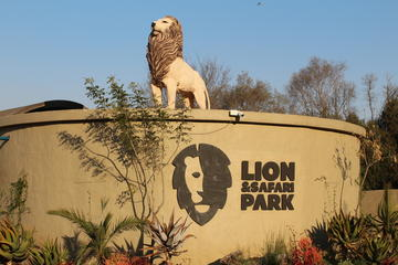Lion Park Half-Day Tour from Johannesburg