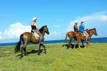 Horseback Riding at Atlantic Shores...