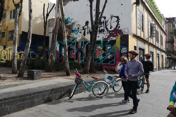 Mexico City Urban Art Bike Tour in Open Gallery