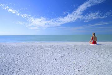 フロリダ州西海岸を回る2日間の旅行 エバーグレ…