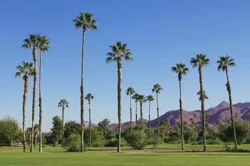 Excursão de compras em outlets e Palm Springs de um dia partindo de...