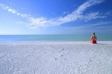 Gita di 2 giorni nella costa occidentale della Florida: Everglades