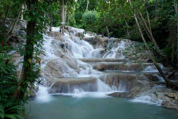 Half Day Tour of Dunn's River Falls