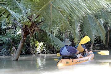 Mangrove monkey land on kayak or motor boat