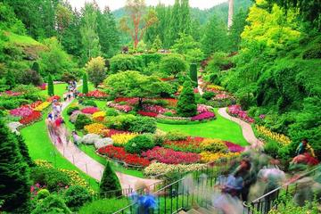 Private Tour: Butchart Gardens and...