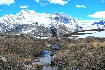Banff nach Jasper, einfache Fahrt