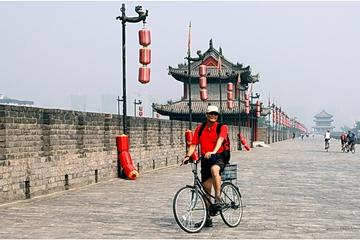 One Day Private Walking Tour in the Old City Area of Xi an