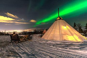 Overnight Stay in Lavvu, Northern Lights and Reindeer Sledding in ...
