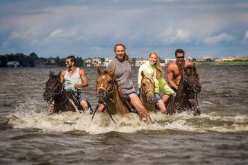 Outer Banks Horseback Ride