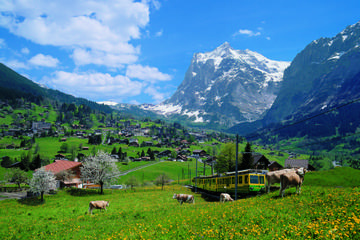 2-Day Jungfraujoch Top of Europe Tour from Zurich: Interlaken or...