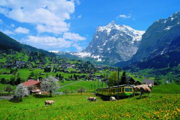 2-tägige Tour zum Jungfraujoch - das...