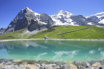 Excursão de um dia aos Alpes Bernese Oberland saindo de Zurique...