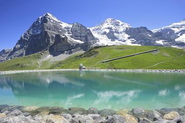 Excursión alpina de un día al Oberland bernés desde Zúrich: Vista...