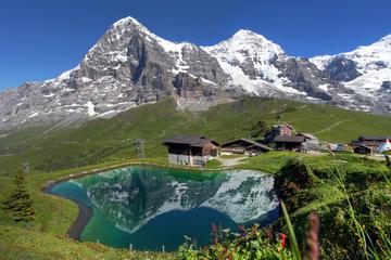 Excursión de un día a los Alpes suizos desde Lucerna: Jungfraujoch y...