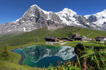 Excursion d'une journée dans les Alpes suisses au départ de Lucerne...
