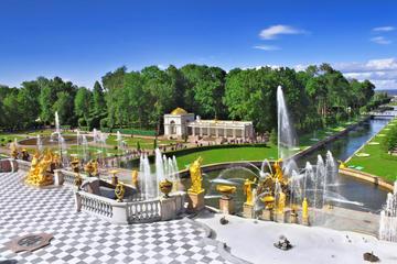Excursão de meio dia de Peterhof (Petrodvorets)