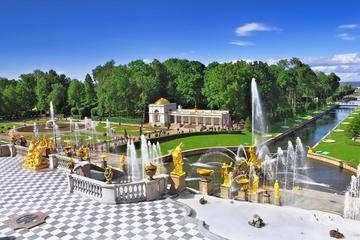 Excursión de medio día a Peterhof (Petrodvorets)