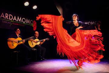 Madrid Flamenco And Wine Tour
