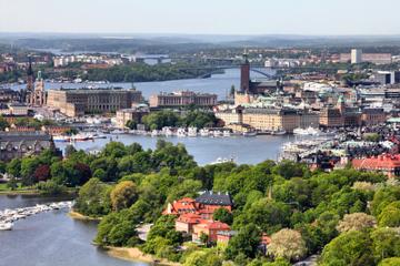 Stockholmsutflykt i land: Stockholm på en dag, sightseeingtur