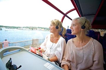 Tour turistico di un giorno a Stoccolma
