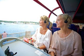 Visita turística de un día a Estocolmo