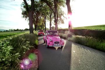 Gita a Parigi in auto d'epoca privata
