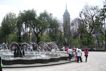 Glimpse of Mexico City Private Tour: Markets, Hist