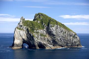 Crucero Agujero en la Roca al cabo Brett desde Auckland