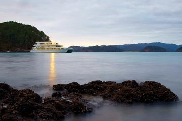 Cruzeiro noturno por Auckland Harbor e Hauraki Gulf