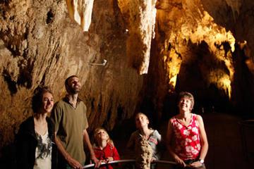Excursión de descubrimiento de las cuevas Waitomo Glowworm de Auckland