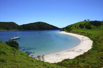 Excursion d'une journée dans la Baie des îles au départ d'Auckland