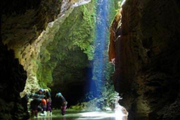 excursion-rotorua-auckland-via-les-grottes-de-waitomo