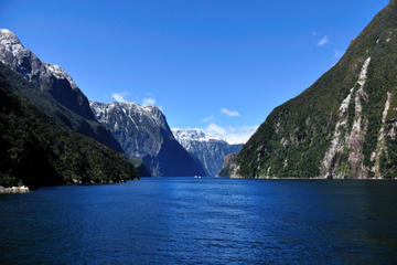 Milford Sound - heldagstur fra Queenstown