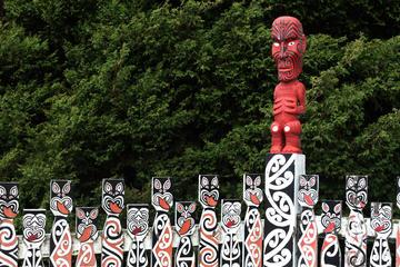 Rotorua Stadtbesichtigung am Vormittag