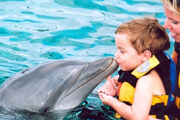 Encuentro con delfines en Punta Cana