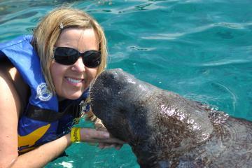 Encuentro con manatíes en Cozumel en Chankanaab Beach Adventure Park