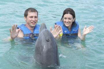 Nage avec les dauphins sur l'Isla Mujeres
