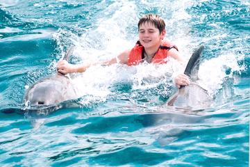 Negril Royal Dolphin Swim