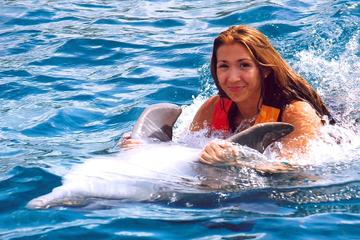 Ocho Rios Dolphin Swim Adventure