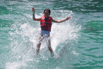 Day Trip from St John: Dolphin Swim in Tortola