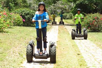 Yaaman Adventure Park Basic