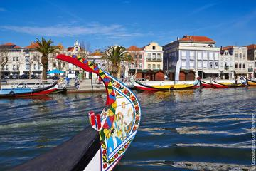 Aveiro and Bairrada Small Group Tour with 2 Gastronomic Experiences...