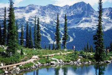 Whistler Mountains and Adventures Tour Including Admission to Scandinave Spa