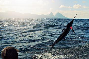 St Lucia Sport Fishing Tour