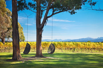 Marlborough Wine Tour and Cruise from...