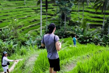 Ubud Tour With Rice Terrace Tegallalang Hiking and Coffee Plantation